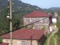 Gulyali