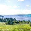 Keuka Lake State Park