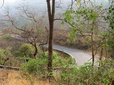Khandala - Bhor Ghat Maharashtra - India