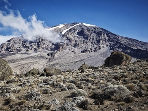 Mt. Kilimanjaro - Northern Circuit 10 Days Photos