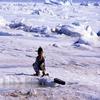 Kid In Qaanaaq
