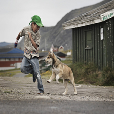 Kid Playing With The Dog