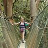 Kinabalu Canopy Walk