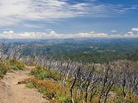King Peak Range