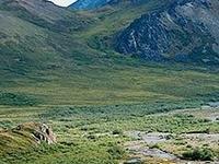 Kivalina River