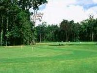 Klub Golf Rimba Irian