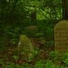 Knyszyn-Jewish-Cemetery