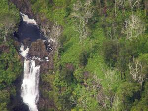 Kohala Waterfalls Small Group Adventure Tour Photos