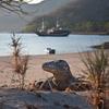 Komodo - Horseshoe Bay