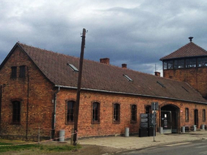 Super Saver Tour Auschwitz, Birkenau and Salt Mine Photos