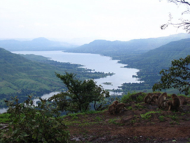 Krishna River, Mahabaleshwar, India Photos