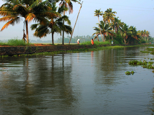 Compelling Kerala Winter Package Photos