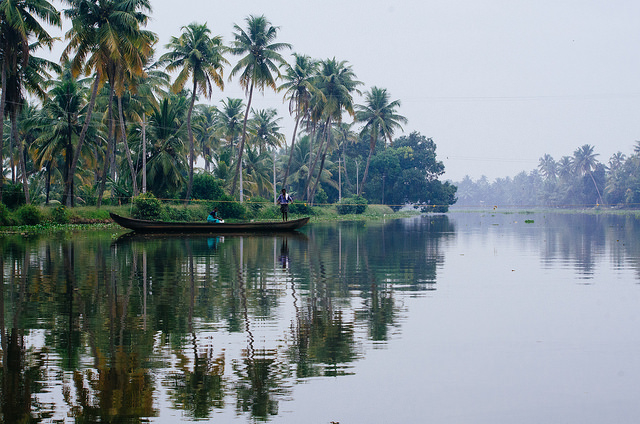 Kerala Tour Package - Hills and Backwater Photos