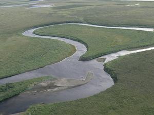 Kuzitrin River