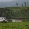 Kottancheri Hills