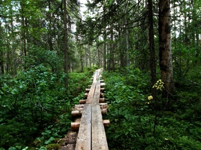 Petkeljarvi National Park