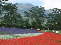 Aso Kujū National Park