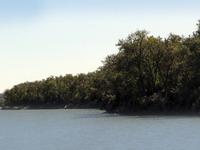 LaFramboise Island Nature Area