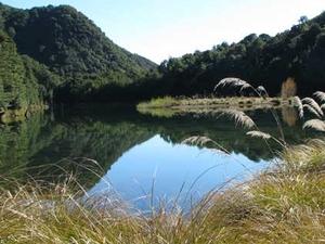 Lake Alexander Hut