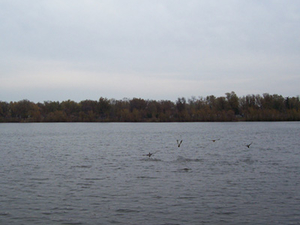 Lake Butte des Morts