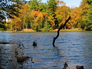 Lake Conasauga Campground