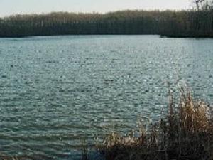Lake Conner