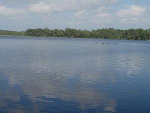 Ocala Lake Eaton Campground
