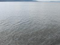 Cami Lake
