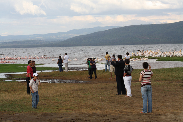 Kenyan Safari - Lake Nakuru Photos