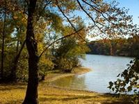 Lake Poinsett State Park