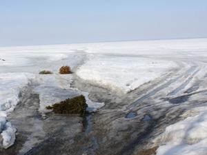 Lake Poygan