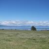 Lake Taupo Shores - Tongariro