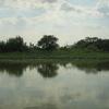 Lake Tisza - Hungary