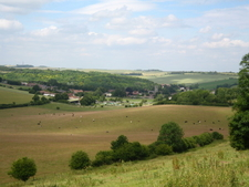 Lambourn And Lynch Wood From South Lambourn