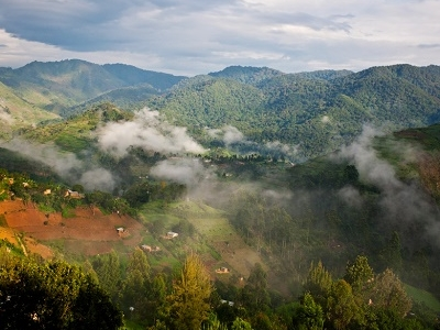 Landscape @ Bwindi Impenetrable National Park UG