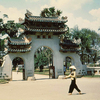 Private Tour: Ho Chi Minh City Sightseeing Tour & Cu Chi Tunnels