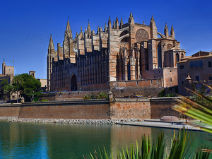 Guided walk in Palma Old City Photos