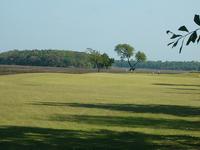Laurel Island Links