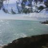 Lawrence Gap Barbados