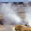 Ledge Geyser - Yellowstone - USA