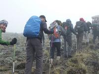 Lemosho Route, Kilimanjaro Trekking Budget Deal