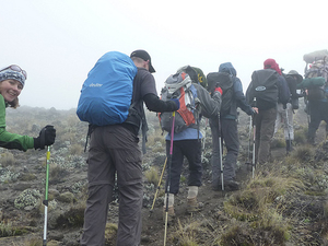 Lemosho Route, Kilimanjaro Trekking Budget Deal Photos