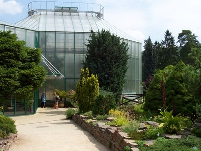 Glasshouse Of The Botanical Garden