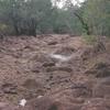 Limestone Creek