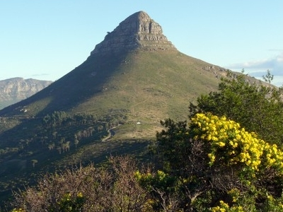 Lions Head