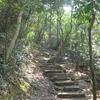 Lion Rock Trail
