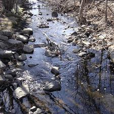 Little Diamond Brook