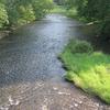 Little Pine Creek