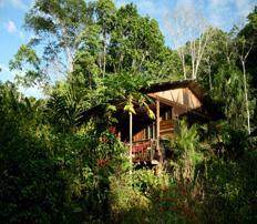 Yachana Tours - Yachana Lodge