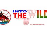 Into The Wild Bukit Lawang